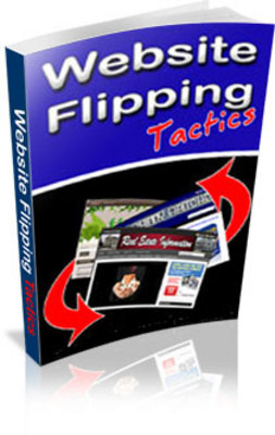 Product picture Website Flipping Tactics